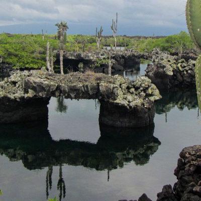 galapagos-los-tunules