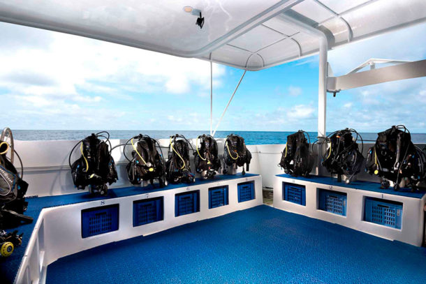 Galapagos Master liveaboard with Academy Bay Diving