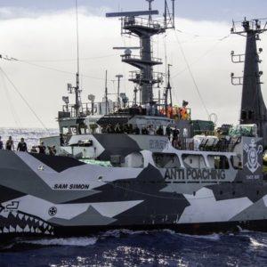 The Sam Simon Sea Shepherd