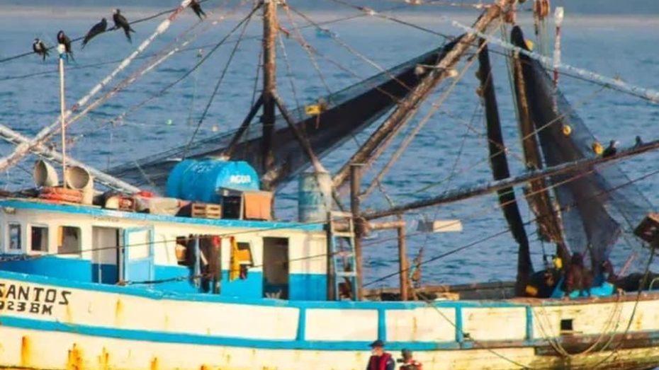 illegal fishing peru